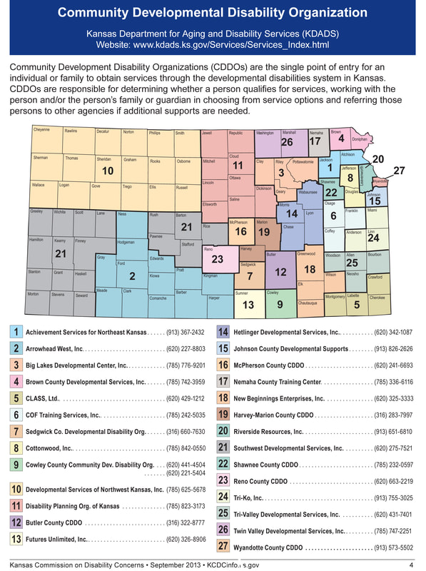 Statewide CDDO coverage map
